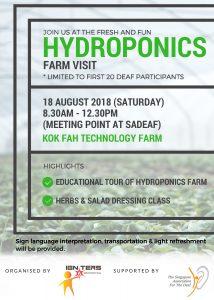 Hydroponics Farm @ Kok Fah Technology Farm | Singapore | Singapore